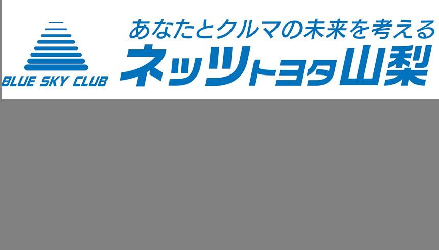 https://www.netz-yamanashi.com/