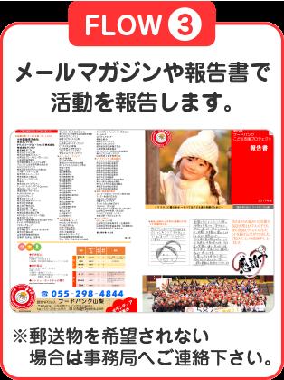 FLOW③ メールマガジンや報告書で活動を報告します。